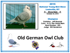 2014 NYBS Champion - Old German Owl Pigeon